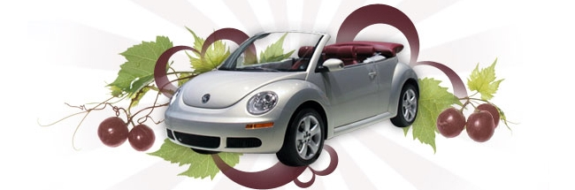 New Beetle Cabrio Blush